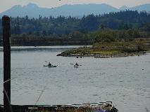 Kayakers in Campbell River Estuary